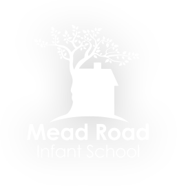 Mead Road Infant and Nursery